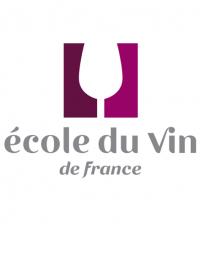 Certification dégustation et conseil en vins niveau 1