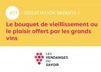 Les Dégustations Savantes - Le bouquet de vieillissement ou le plaisir offert par les grands vins