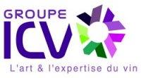 Formation icv : vendanger à bonne maturité grâce à l'analyse sensorielle du raisin