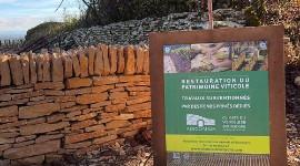 Il faut sauver le bâti viticole de Bourgogne