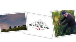 «Les Vignes des Alpes», nouvelle SCIC née d