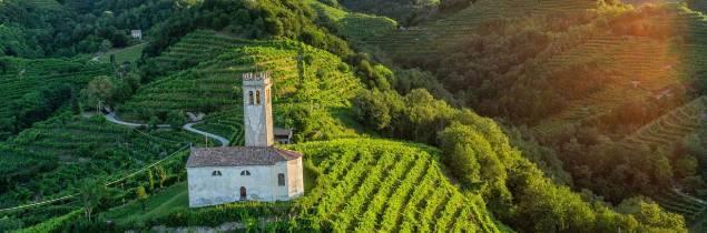 Pour les soutiens de cette candidature, ces paysages de la Haute Adriatique ont été façonnés par la culture de la vigne, désormais spécialisée dans la production de vins effervescents.