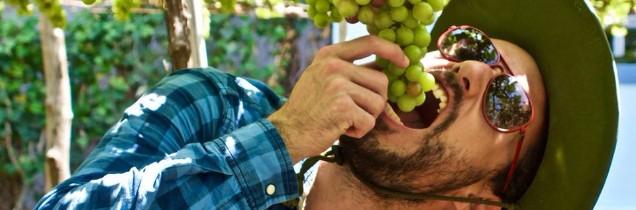 Jean-Baptiste Ancelot parcourt, avec son équipe, les vignobles méconnus du monde entier depuis plus de trois ans