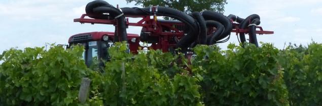 Beaucoup de produits vigne sont soupçonnés d'être des perturbateurs endocriniens