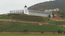 Le groupe chinois Changyu investit dans le vignoble chilien