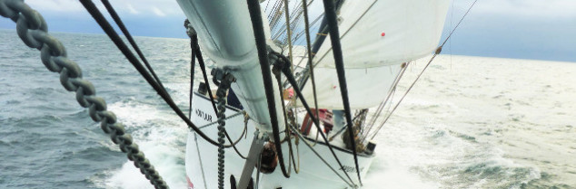 Symbolisant une alternative écologique aux cargos naviguant au pétrole, le voilier Avontuur a été construit en 1920. Sa rénovation avec éoliennes et panneaux solaires date de 2016.