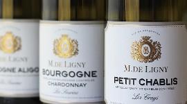 Les Grands Chais de France mettent un pied de plus en Bourgogne