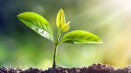 Répondre au nouvel enjeu de l'agro-écologie
