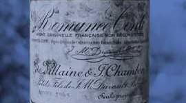 Combien d'hectares de vignes pourra-t-on s'acheter avec la bouteille la plus chère au monde ?