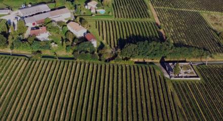 Bordeaux : le château Vallon des Brumes racheté par son importateur chinois