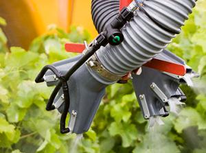 Protection des vignes : le point sur les résistances de mildiou, oïdium et botrytis aux fongicides