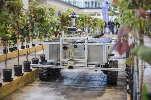 robot taille de la vigne et de travail sous le rang