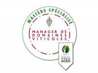 Webinaire :  Mastère Spécialisé Manager de domaines viticoles