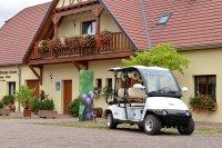 Alsace : balade dans les vignes en voiture électrique avec guide