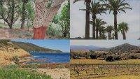 Tour des Terroirs du Golfe de St Tropez