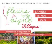 Fleurs de Vigne Villages 2019