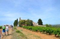 Camins de Boutenac -  Balades vigneronnes