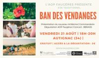 Ban des Vendanges à Autignac