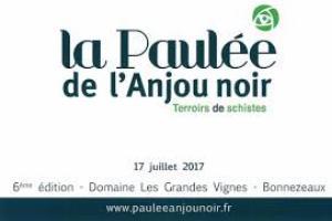 Vitisphere La Paulée De L Anjou Noir 2017