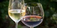 Faire en sorte que la modération soit à la mode, tel est l'objectif de cette association suédoise qui fait son entrée dans Wine in Moderation.