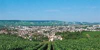 Autour de l'aire délimitée de Champagne, certains ont la volonté de planter des vignes sans autorisation de plantation. La Champagne refuse d'ouvre les autorisations à planter.
