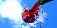 Les statistiques d'Inter Rhône témoignent de cet empressement du marché vrac des vins rouges en côtes-du-rhône. Selon l'interprofession, à fin décembre, 286 000 hl avaient été contractualisés contre 194 000 hl l'an dernier à la même époque.