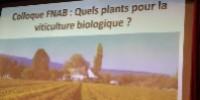 En 2035, les viticulteurs bio devront utiliser des plants bios