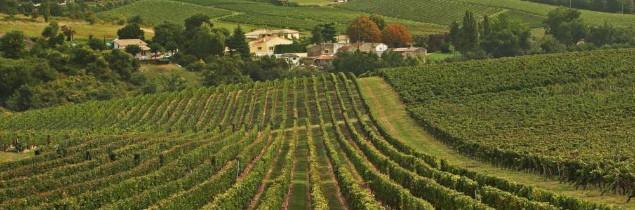 Ont actuellement voté l'évolution agroenvironnementales les syndicats viticoles d'Anjou, de Bordeaux, des Côtes de Bordeaux, de l'Entre-deux-Mers, de Saint-Émilion…