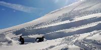«C'était vraiment l'année où il fallait le tenter! Beaucoup de neige est tombée» se félicite le vigneron bordelais.