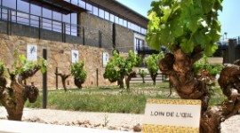 The Labastide winery focuses on heirloom Gaillac grape varieties such as Loin de l'oeil.