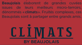 An excerpt from the Interbeaujolais poster, explaining the region's strategy for outstanding Beaujolais wines.