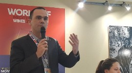 Jean-Philippe Perrouty of Wine Intelligence presented the second round of figures from the Mediterranean Wine Observatory at Vinisud on 19 February.