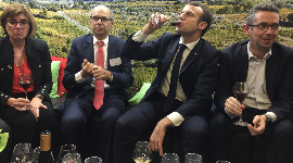 As he took time out for a tasting with wine industry representatives, President Macron backtracked on his short comment earlier in the day about glyphosate-free vineyards.