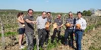 Outre la réduction des herbicides, les vignerons Terra Vitis travaillent aussi sur le développement de la biodiversité, avec des nichoirs à mésanges et des gîtes à chauve-souris, qu'ils achètent en commande groupée.