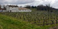 Quatre parcelles de vigne se trouvent autour du groupe scolaire de Villeneuve-de-Blaye. Celles traitées ce 5mai se trouvent à l'Ouest (en conventionnel, Éperon Pépite et Pepper) et à l'Est (en bio, héliocuivre et souffre).