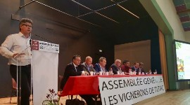 "'Very humbly, Tutiac believes its experience and teams can help structure the Sauternes region"", said Stéphane Héraud on April 26 in Marcillac."