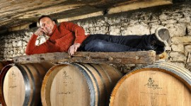 Family-run Drouet Cognacs have 40 hectares of vines and sell their brandies at the cellar door and to trading companies