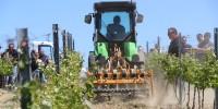 Les viticulteurs ont pu se rendre compte du travail effectué par les 5 déchaumeurs à disques du jour