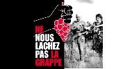 Le message passé par la Fédération des vins du Puy de Dôme, « Ne nous lâchez pas la grappe », a pour but de rappeler que la filière compte plus que jamais sur les consommateurs.