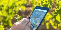 Un simple smartphone doté d'un appareil photo et d'un GPS suffit.