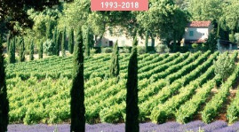 The Coteaux Varois en Provence appellation covers 28 localities in Var with 2,700 ha of bearing vines. A review of its boundaries in 2017 increased hectareage to 2,900.