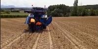 Les chantiers de plantations mécaniques ne peuvent pas être réalisés à cause des sols trop humides ou inondés
