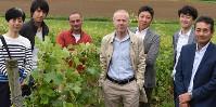 Les dirigeants de la société Nichifutsu Shoji et leurs salariés, dans les vignes d'Anjou à Coutures.