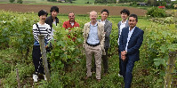 Executives from Nichifutsu Shoji and their employees in the vineyards of Anjou in Coutures.