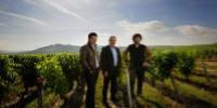 Saget La Perrière représente 320 hectares de vignobles.