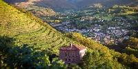 Le vignoble d'Irouléguy, au pays basque