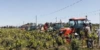 Axema a constaté une baisse de 25% des immatriculation de tracteurs spécialisés entre 2017 et 2018 sur la période janvier-mai.