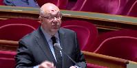«Nous avons un gros chantier à mener pour trouver les voies permettant une réduction de l'utilisation du cuivre sur les productions de tomates et les productions viticoles notamment» reconnaît Stéphane Travert, ce 3juillet au Sénat.