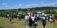 Visite des vignes de la Cave de Lugny où capteurs et station météo recueillent des données techniques.