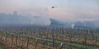 En mai dernier à Cognac, feux de paille et hélico ont été déployés pour replaquer au sol les fumées chaudes et éviter les gelées.